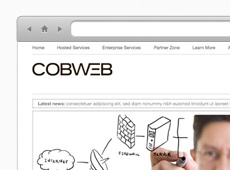Cobweb Site Redesign